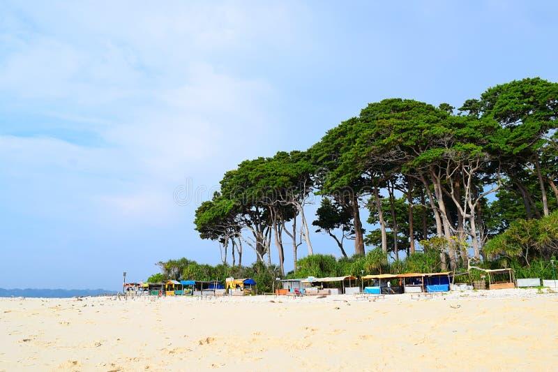 Rij van Boxen met Lange Bomen op Achtergrond in Wit Sandy Beach - Zonsondergangpunt, Laxmanpur, Neil Island, Andaman, India stock afbeeldingen