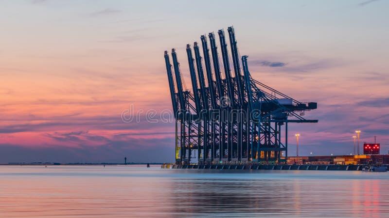 Rij van containerterminalkranen bij de rode gekleurde zonsondergang, haven van Antwerpen, België stock afbeeldingen