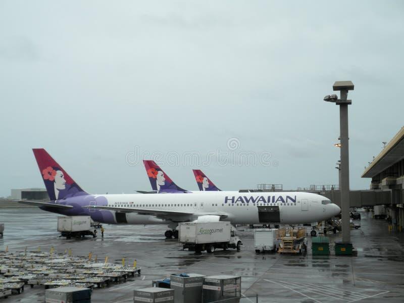 Rij van de vliegtuigen van Hawaiian Airlines die bij luchthaven worden geparkeerd stock afbeelding
