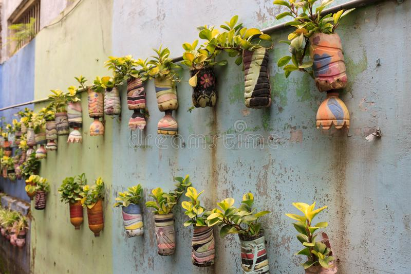 Rij van het hangen, ingemaakte installaties, in Malang, Indonesië stock fotografie