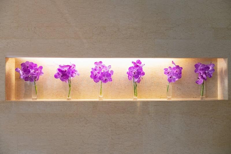 Rij van Kleurrijke purpere orchideeën in kleine glasvazen in hotelroo stock foto's