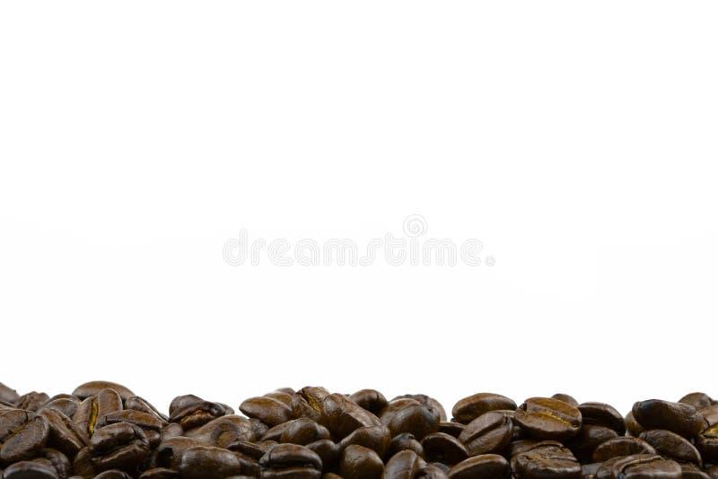 Rij van koffiebonen royalty-vrije stock foto's