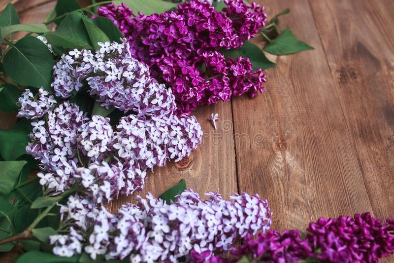 Rij van liliacbloemen op houten achtergrond met ruimte voor bericht Vrouwen ` s of de achtergrond van de Moeder` s Dag stock afbeelding