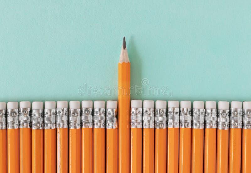 Rij van oranje potloden met één gescherpt potlood Leiding/het duidelijk uitkomen van een menigteconcept met exemplaarruimte stock afbeelding