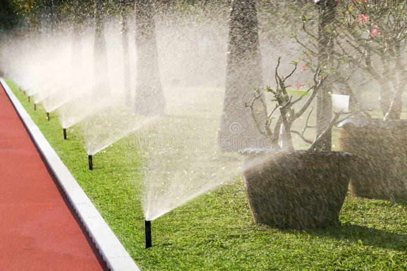 Rij van sproeierhoofden die het gras water geven stock afbeelding