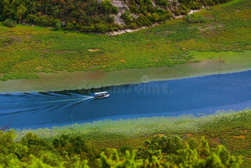 Rijeka Crnojevica Fluss bei Skadar Lake - Montenegro lizenzfreies stockfoto
