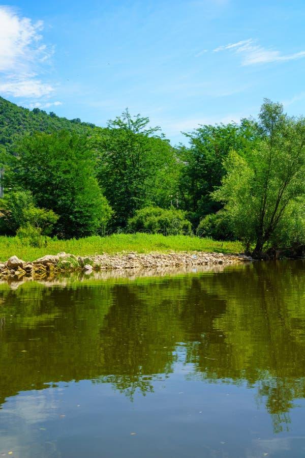 Rijeka Crnojevica, Skadar jezioro zdjęcie royalty free
