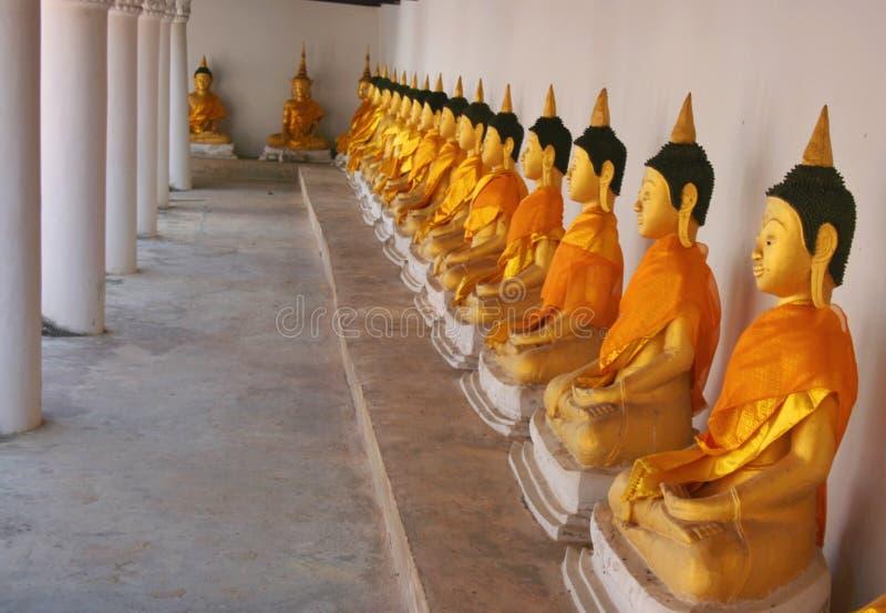 Rijen van beeldhouwwerk de gouden oude Boedha in tempel Zuid-Thailand stock foto