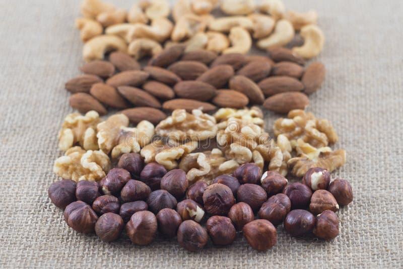Rijen van cashewnoten, amandelen, okkernoten en hazelnoten op een jutestof Selectieve nadruk op hazelnoten royalty-vrije stock foto