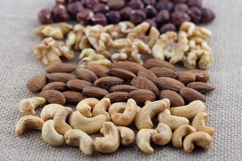 Rijen van cashewnoten, amandelen, okkernoten en hazelnoten op een jutestof Selectieve nadruk op cachou royalty-vrije stock foto