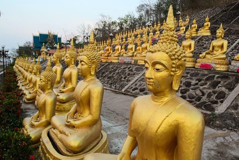 Rijen van gouden zitting Buddhas stock afbeeldingen
