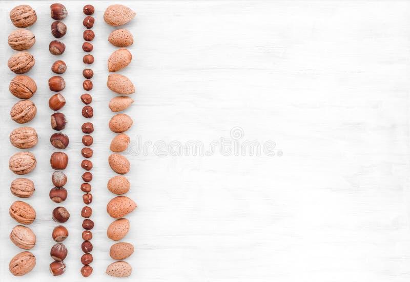 Rijen van hazelnoten, amandelen en okkernoten op witte achtergrond stock foto's
