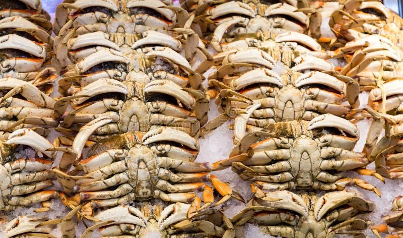 Rijen van Krabben op Ijs stock afbeelding