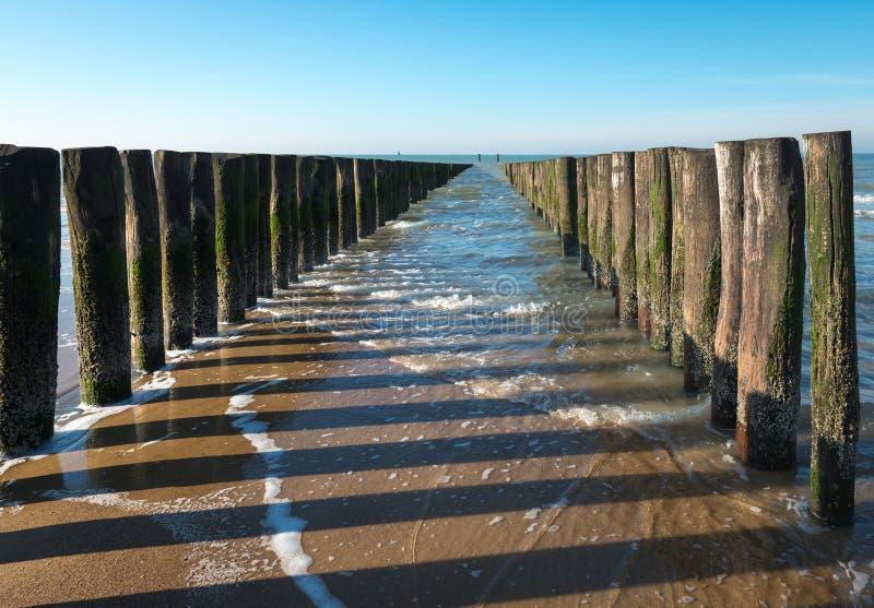 Rijen van Noordzeegolfbrekers at low tide stock afbeeldingen