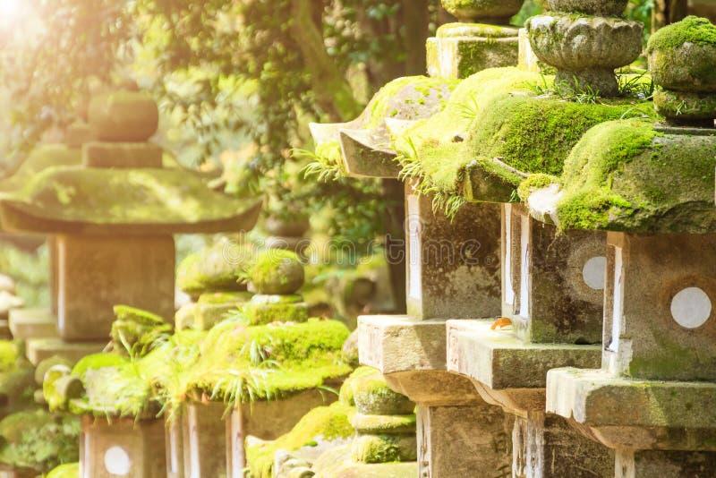 Rijen van oude steen, concrete en houten die lantaarns in mos wordt behandeld Nara Park stock foto