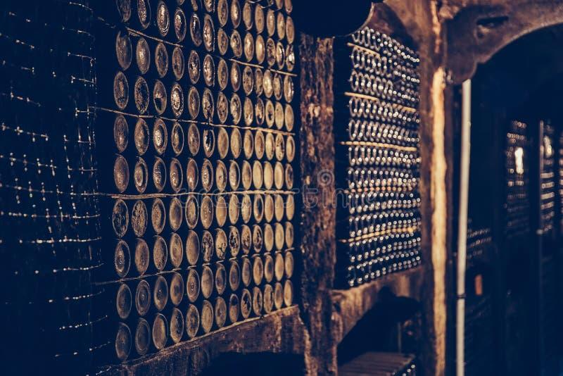 Rijen van oude uitstekende wijnflessen op planken in speciale kelder royalty-vrije stock afbeelding