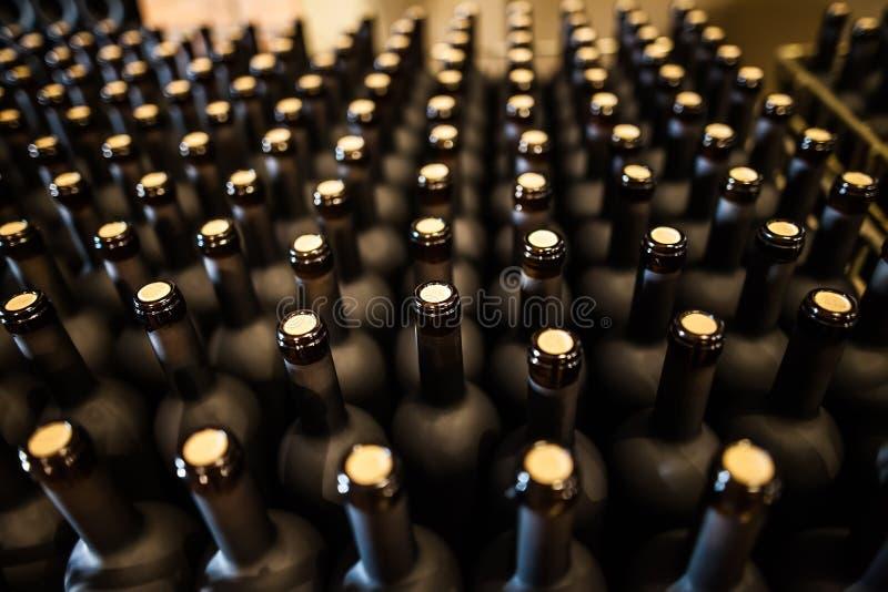Rijen van wijnflessen in kelder stock foto's