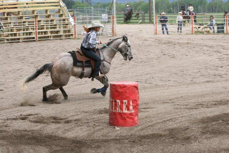 Rijkste Indische Rodeo royalty-vrije stock foto's