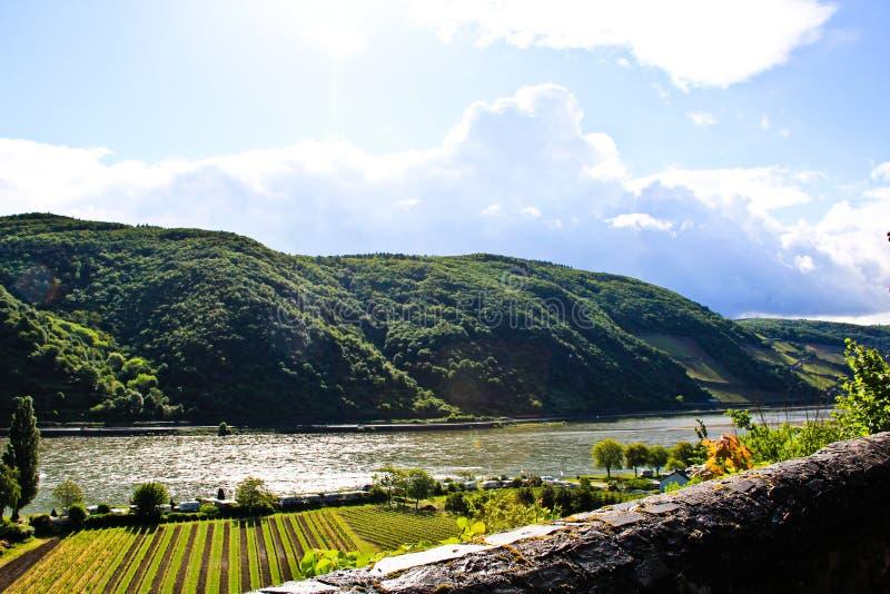 Rijn-rivier royalty-vrije stock foto's
