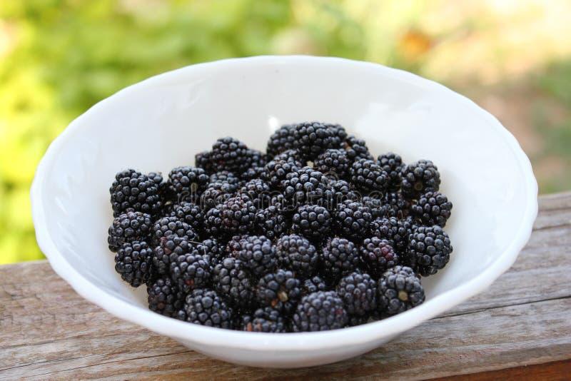 Rijp en sappig Blackberry in een witte plaat op een groene achtergrond Plaat nuttig Blackberry in het dorp stock foto's