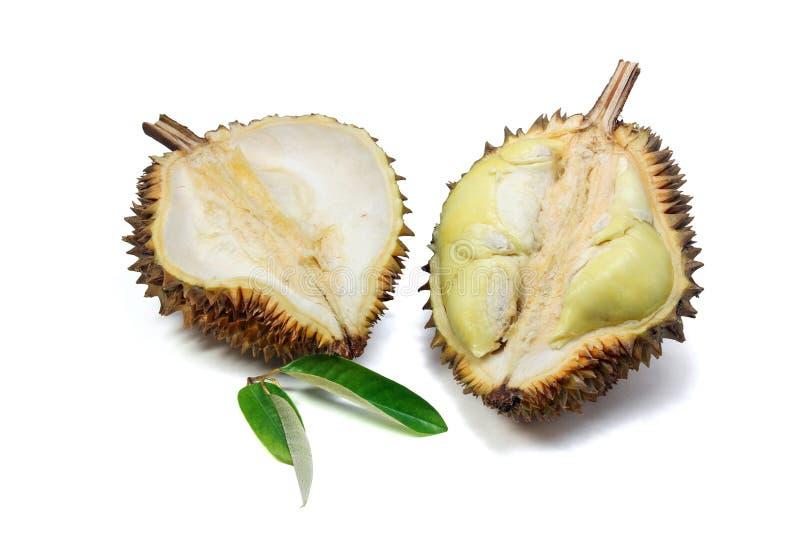 Rijp geel vlees van Durian en Durian-blad op witte achtergrond stock foto