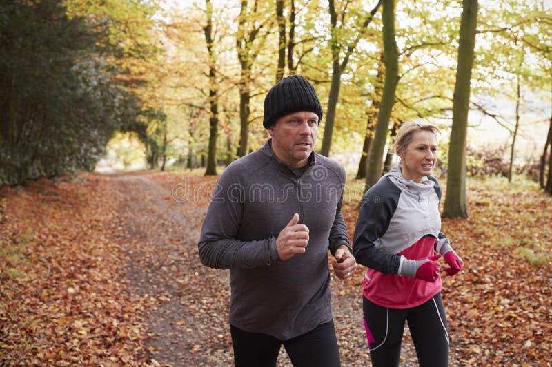 Rijp Paar die Autumn Woodland Together doornemen stock afbeeldingen