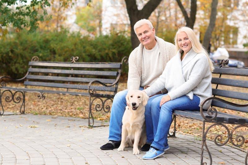 Rijp paar met hun hond het rusten royalty-vrije stock afbeelding