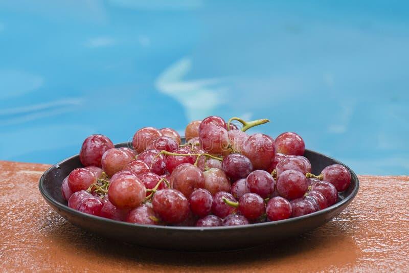 Rijp rode druiven dichtbij zwembad stock foto