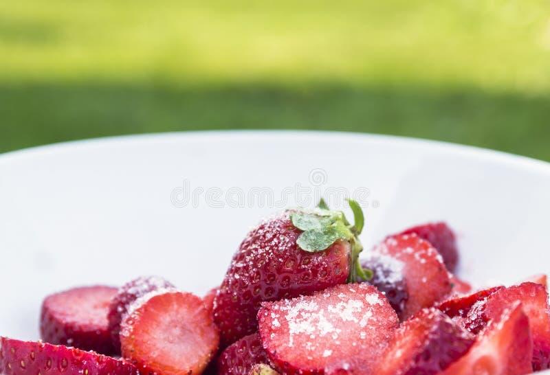 Rijpe aardbeien in melk met suiker stock foto