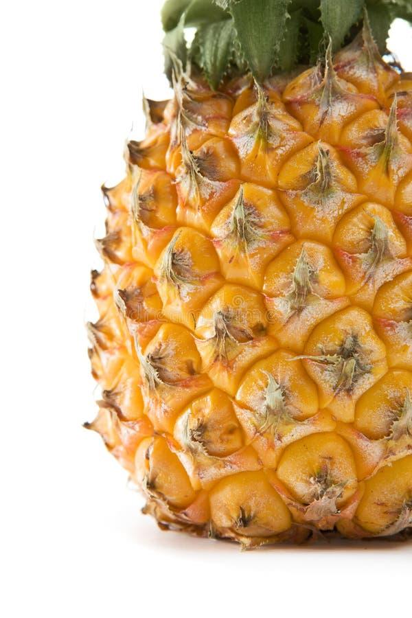 Rijpe ananas royalty-vrije stock afbeelding