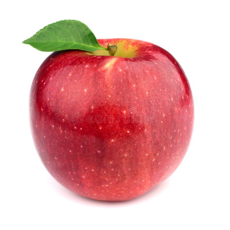 Rijpe appel met bladeren stock afbeelding