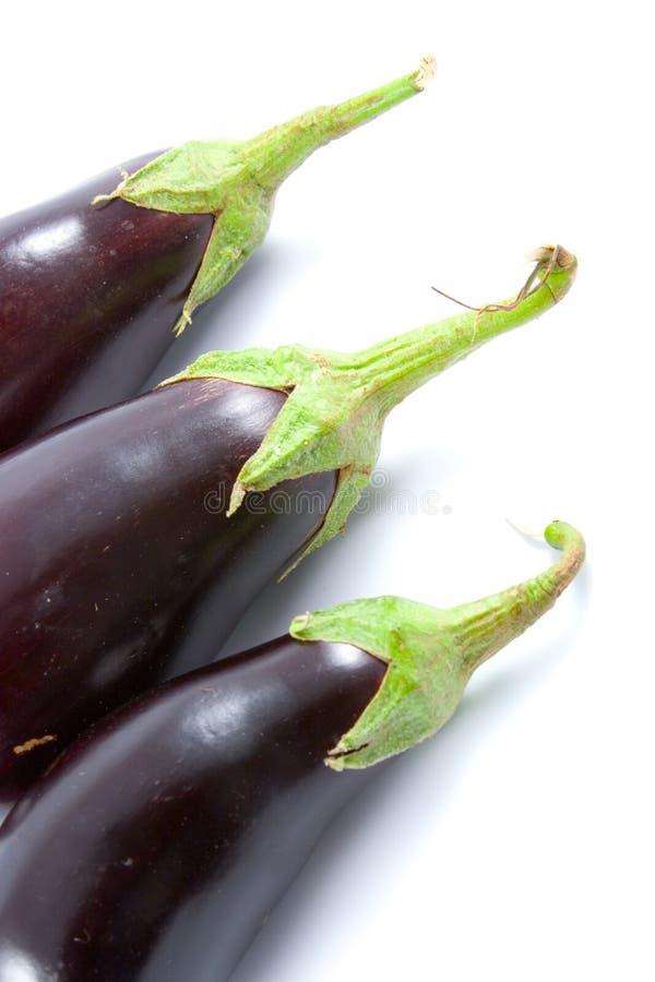 Rijpe aubergine royalty-vrije stock foto