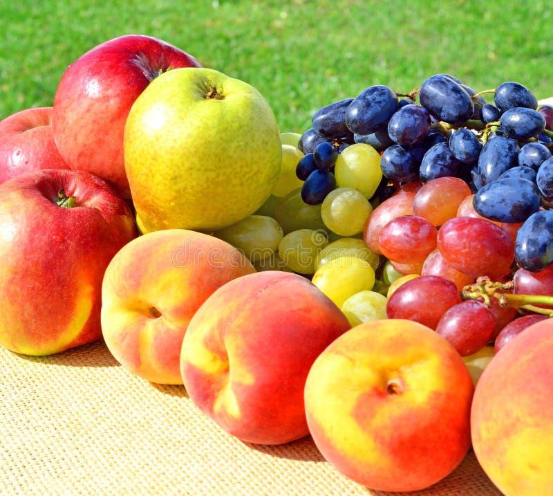 Rijpe druif, perziken, peren, appelen op gras royalty-vrije stock afbeelding