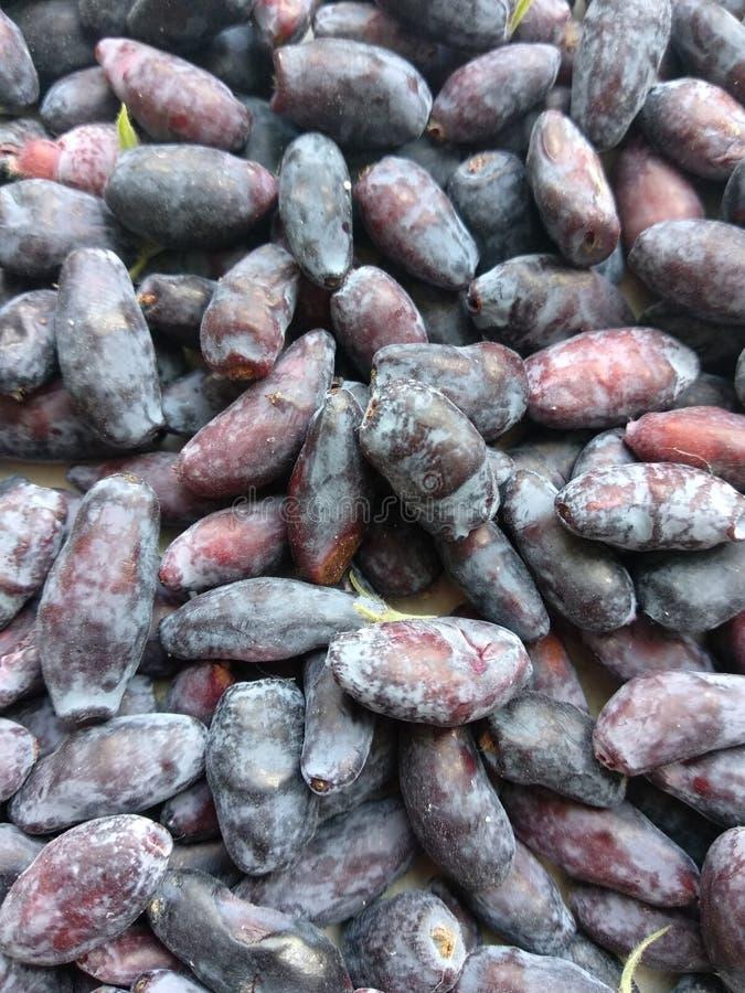 Rijpe eerste bessen van kamperfoelie Kleine purpere en blauwe bessen op een witte achtergrond Heel wat verse bessen met bladeren stock foto's