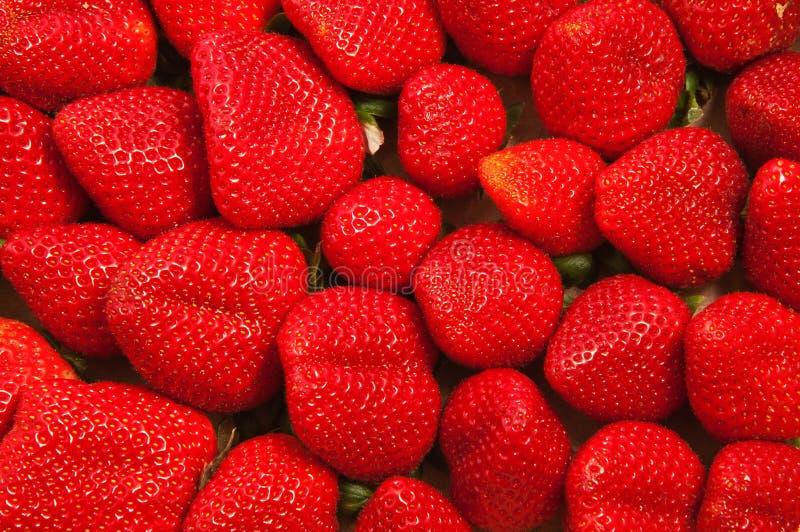 Rijpe en verse aardbeien stock afbeelding