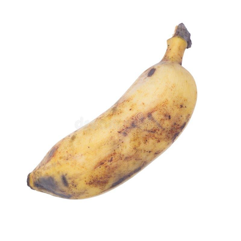 Rijpe gecultiveerde die banaan op wit wordt geïsoleerd stock foto's