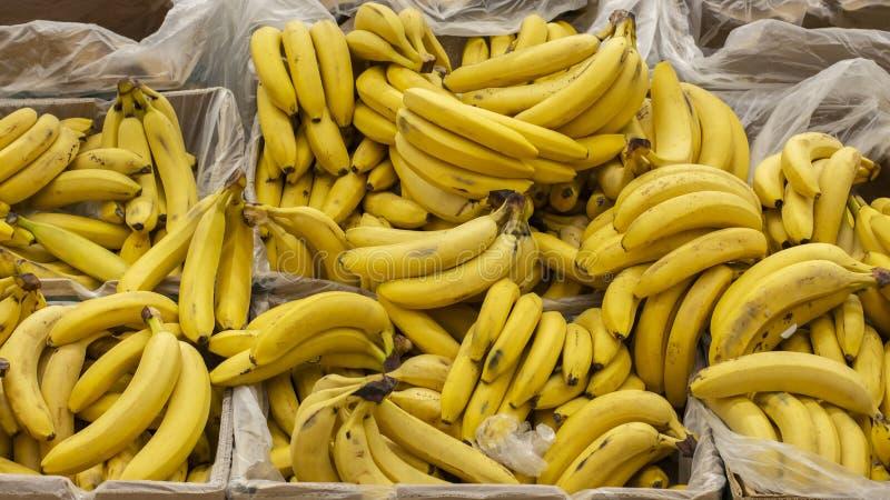 Rijpe gele die bananen in dozen op de teller van een marktsupermarkt worden ingepakt Achtergrondbehangbanner royalty-vrije stock afbeelding
