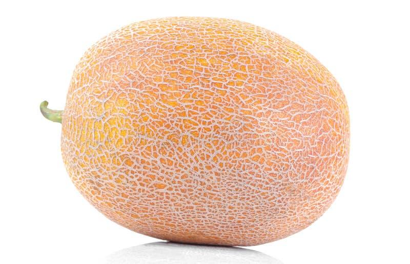 rijpe grote meloen op wit geïsoleerde achtergrond fruit Close-up royalty-vrije stock fotografie