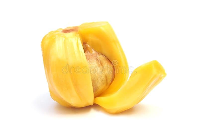 Rijpe Jackfruit stock foto