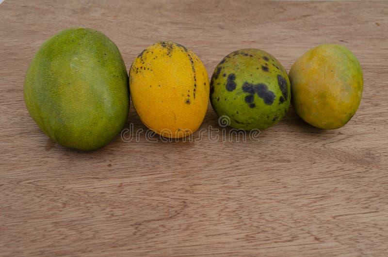 Rijpe Juley, Connon, Robin, en Greenskin-Mango's royalty-vrije stock fotografie