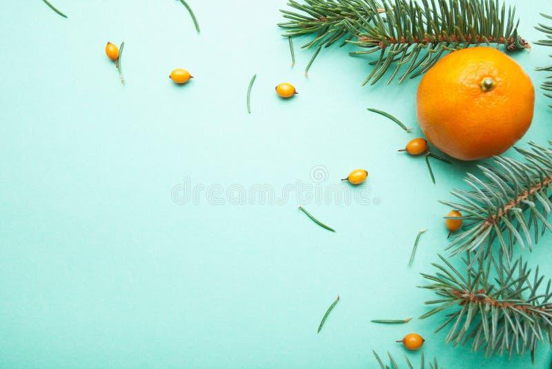 Rijpe mandarin, duindoorn en naalden, Kerstmisachtergrond royalty-vrije stock afbeelding