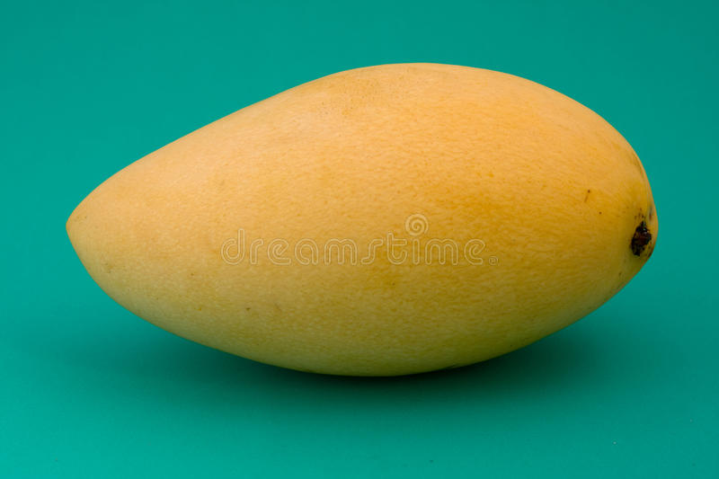 Rijpe mango stock foto's