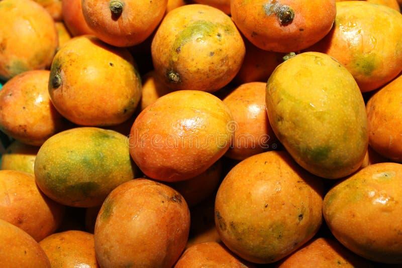 Rijpe mango's stock fotografie