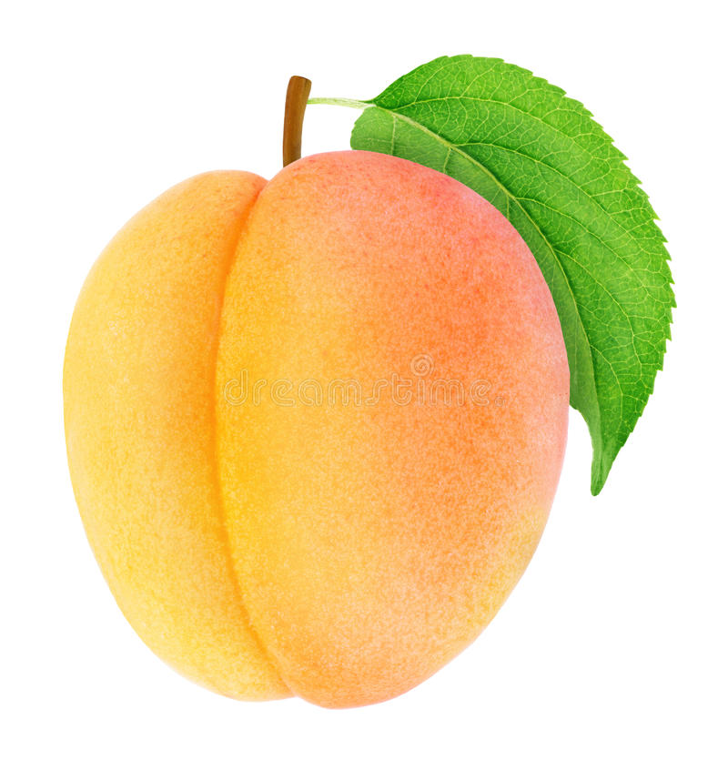 Rijpe oranje abrikoos met groen geïsoleerd blad stock foto's
