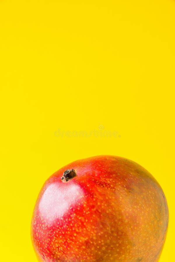 Rijpe organische sappige kleurrijke mango op heldere zonnige gele achtergrond Gezond de vitaminenconcept van de levensstijlvegani stock afbeelding