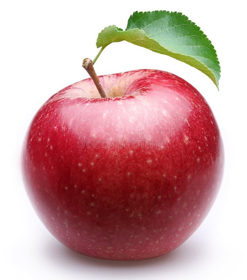 Rijpe rode appel met een blad. stock afbeelding