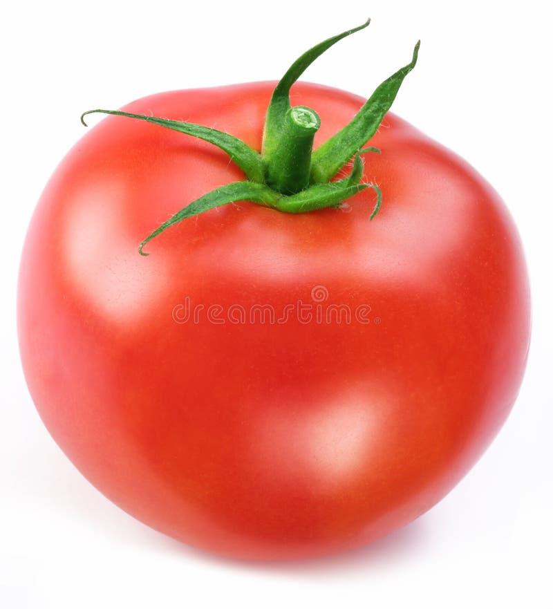 Rijpe rode tomaat. stock fotografie