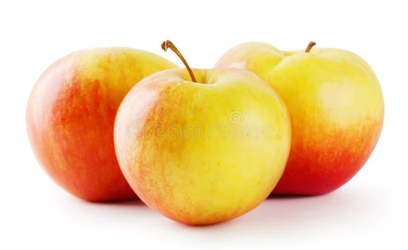 Rijpe sappige appel drie stock fotografie