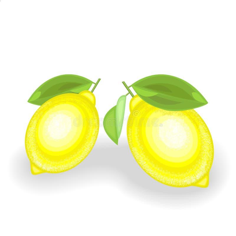 Rijpe sappige citroenen Twee rijpe vruchten Aromatisch behandel De bron van vitaminen en spoorelementen Vector illustratie royalty-vrije illustratie