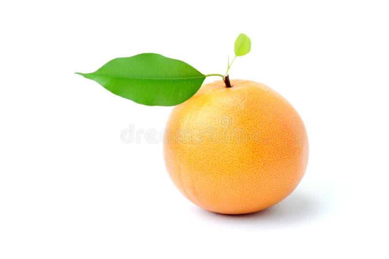 Rijpe smakelijke grapefruit met blad royalty-vrije stock afbeeldingen